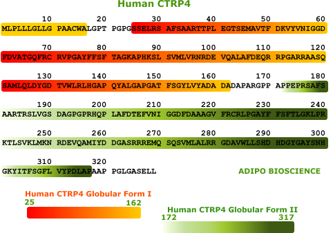 human ctrp4 protein sequence
